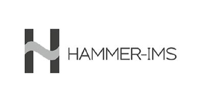 1240REF-06-10-02--Hammer-IMS